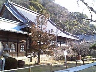 2008-3-1 012.jpg