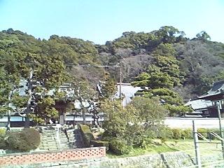 2008-3-1 017.jpg